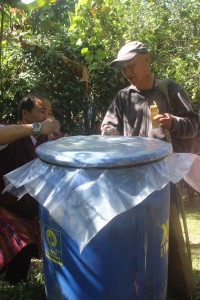 Collection and Destrcution of dropped citrus fruits in drums